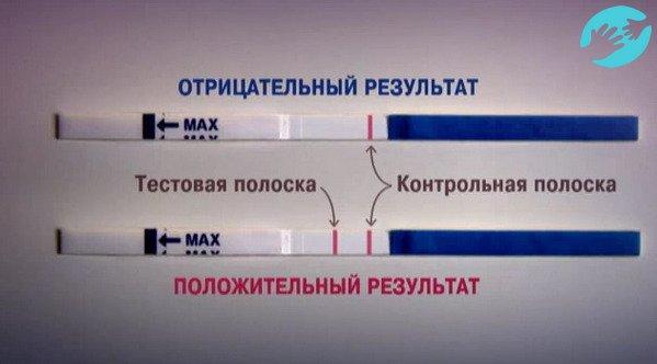 Фраутест на беременность инструкция по применению frautest тесты.