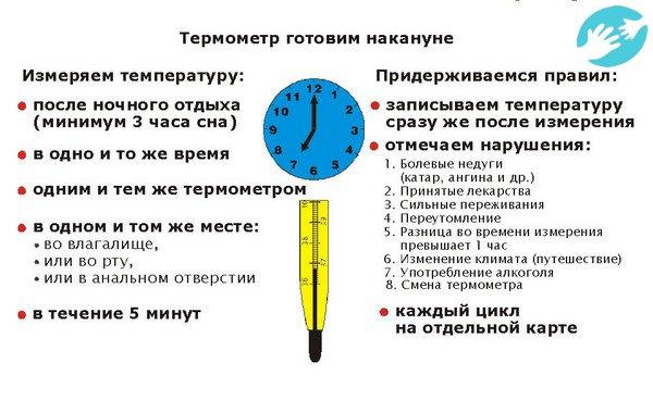 когда мерить базальную температуру для определения беременности
