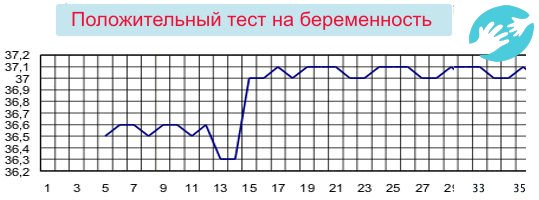 Какая базальная температура перед месячными должна быть за 2, 3 дня или за неделю, норма