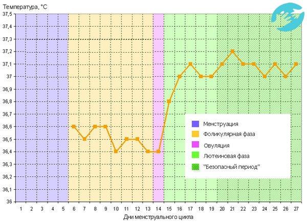 Можно ли измерять базальную температуру вечером